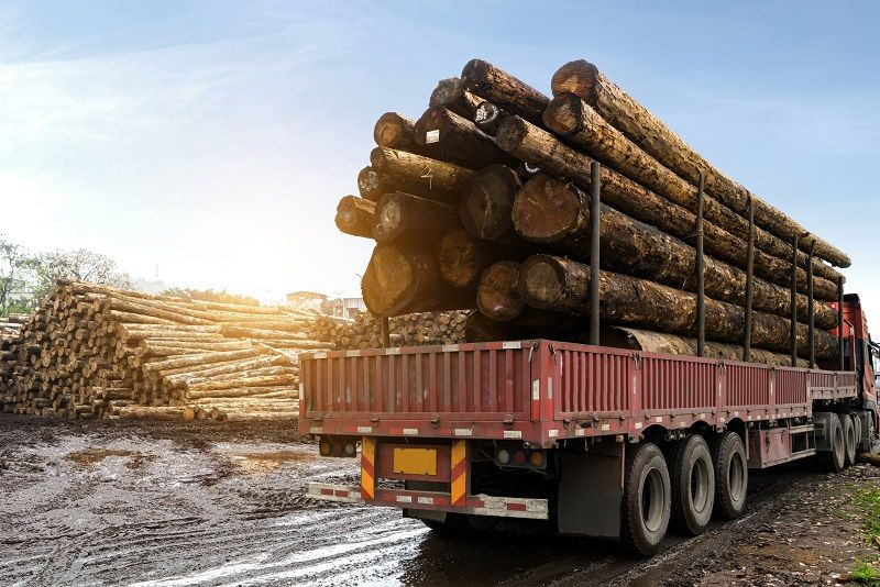 The-car-carries-wood-in-a-wood-processing-plant-cm